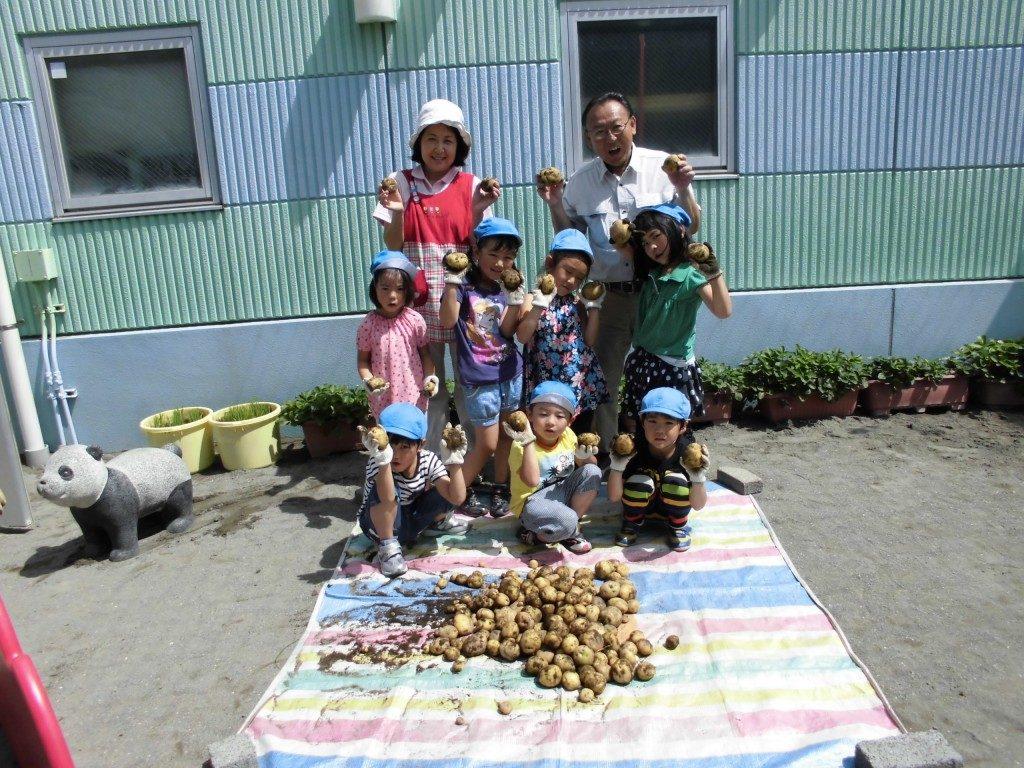 ジャガイモの収穫1